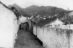 18_calle_rio_1950