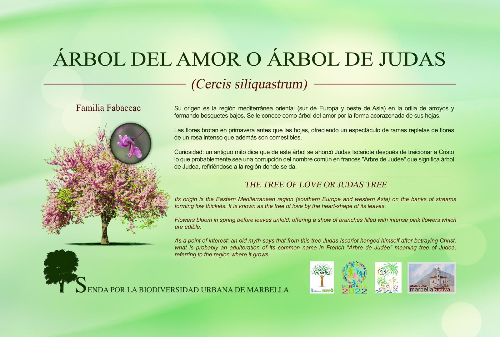 1.-5-arbol-del-amor-low