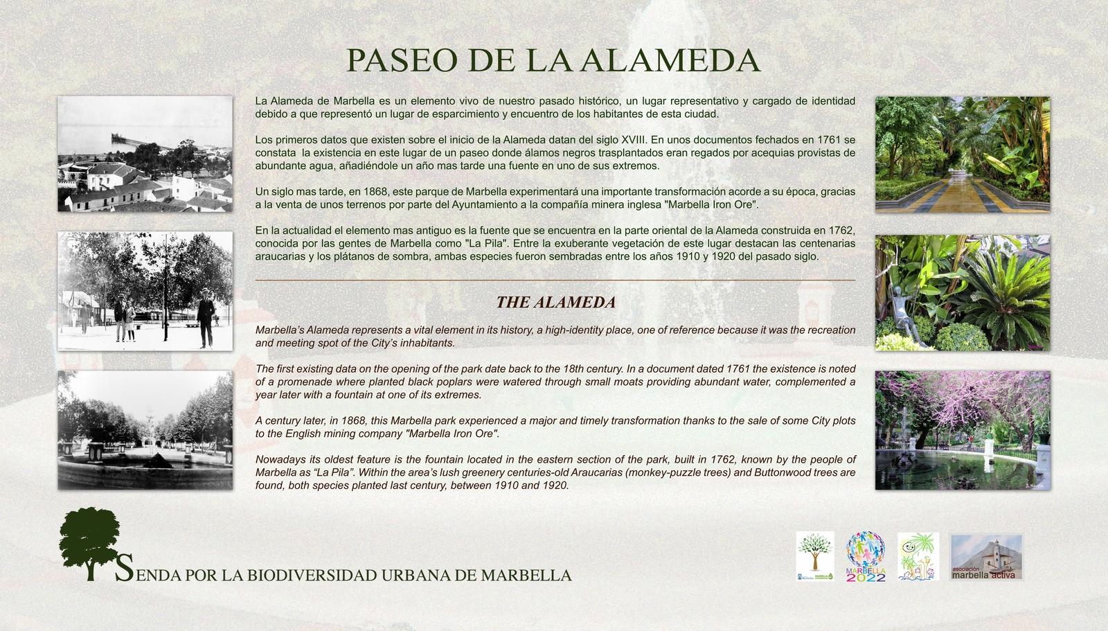 1.1-paseo-de-la-alameda-low