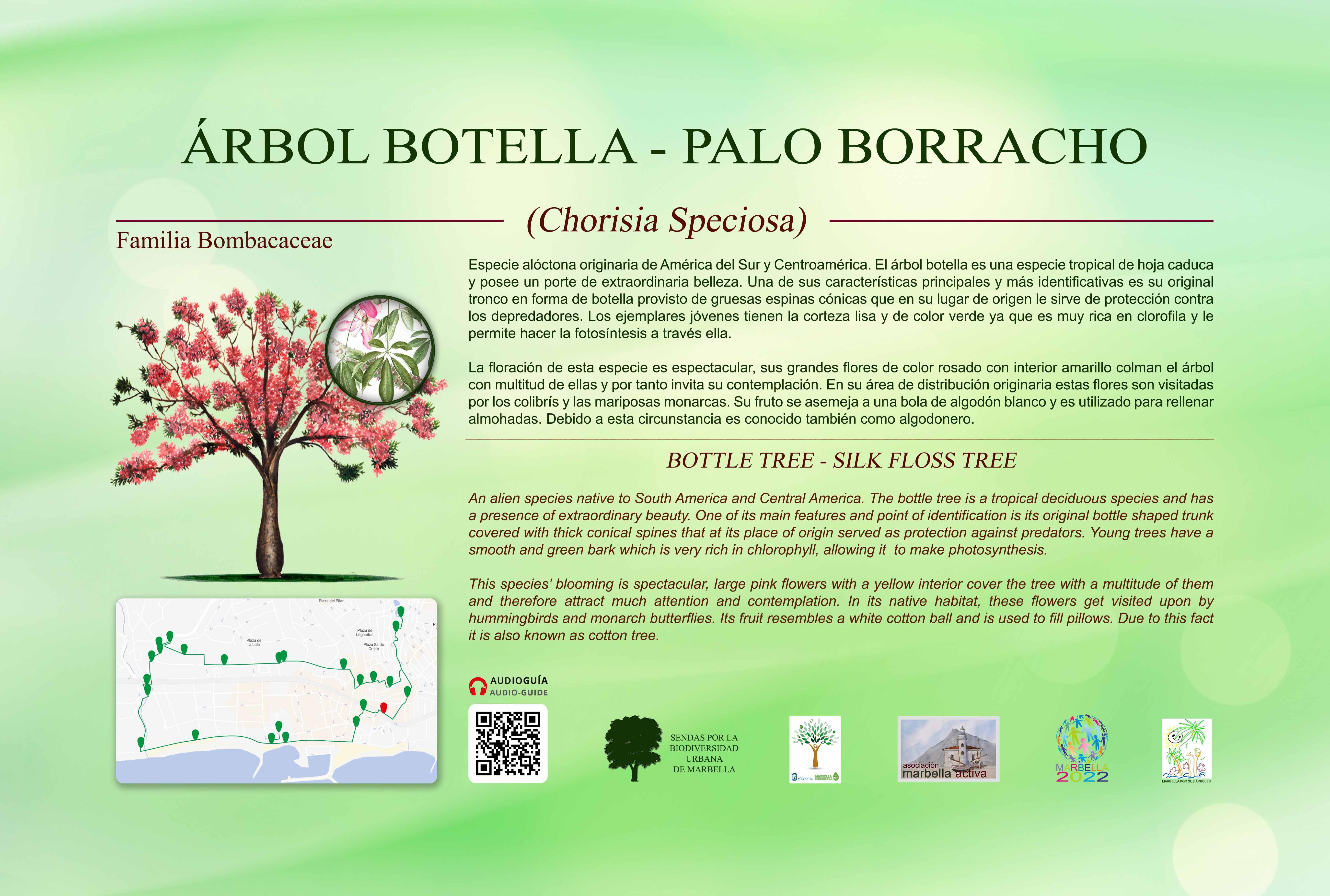 24-CARTELES-arboles-40-x-25-cm-marbella