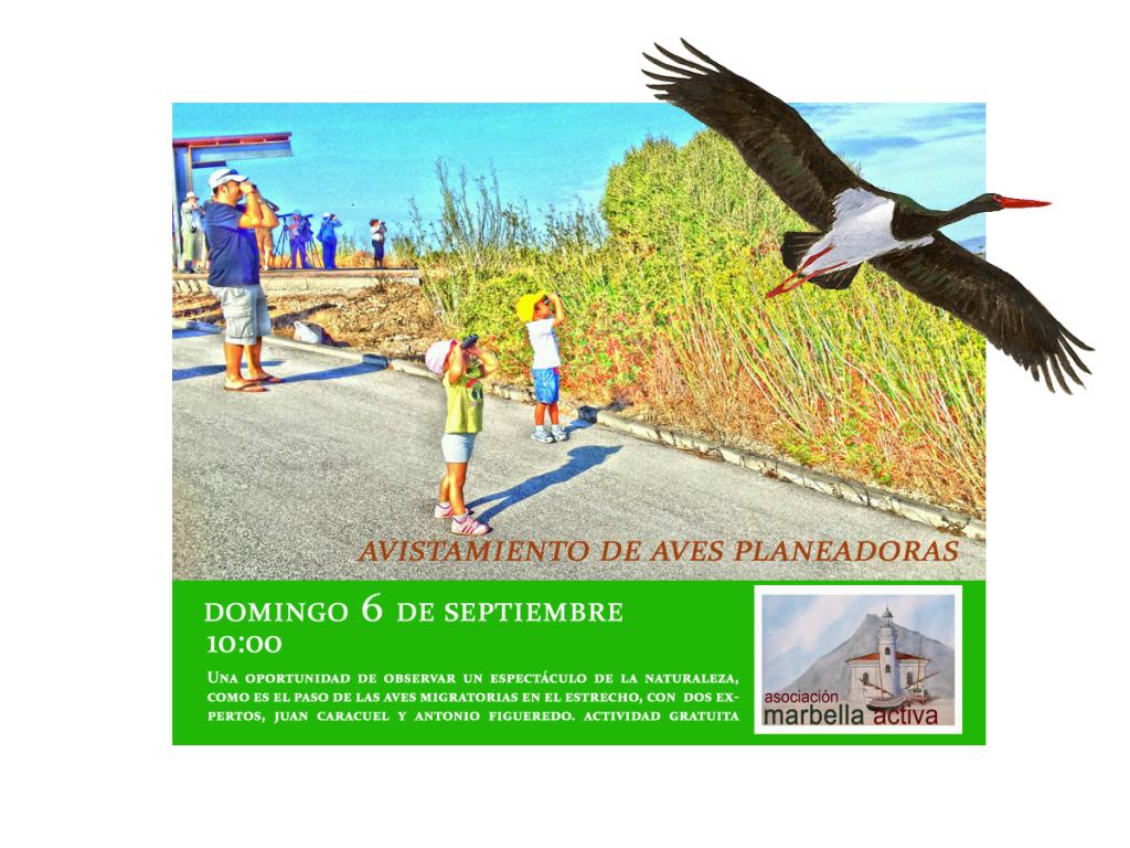 Cartel aves planeadoras 2015